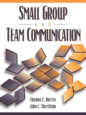 essay on small group and team communication