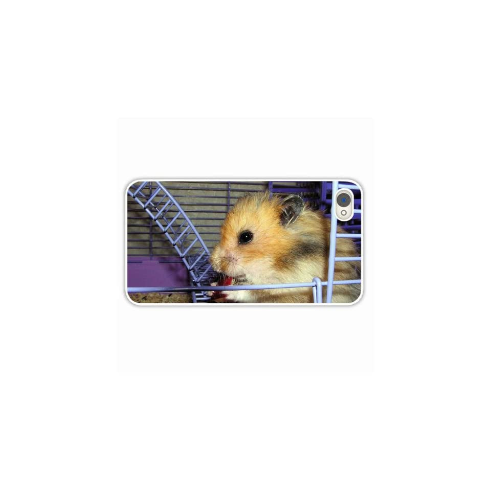 Diy Iphone 4 & 4S Animals Hamster Food Wheel Ca Of Birthday Present White Cell Phone Skin For Girls