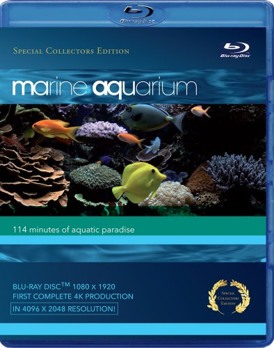 Marine Aquarium / Морской аквариум (2008)