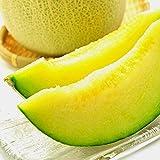果物 ギフト 静岡県産 高級 メロン 日本が誇る 静岡 マスクメロン 大玉 1玉 1.3kg 以上 ランキングお取り寄せ