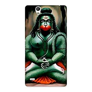 Gorgeous Jai Hanuman Multicolor Back Case Cover for Sony Xperia C4