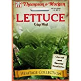 Thompson Morgan 4852 Heirloom Lettuce Crisp Mint Seed Pa