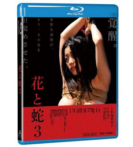 [小向美奈子 本宮泰風 小松崎真理 琴乃 睦五朗] 花と蛇3 特別版【Blu-ray】