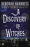 img - for A Discovery of Witches (All Souls Trilogy) book / textbook / text book
