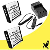 Two Halcyon 1800 mAH Lithium Ion Replacement Battery and Charger Kit for Fujifilm FinePix Real 3D W3 10 MP Digital Camera and Fujifilm NP-50