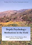 Depth Psychology: Meditations in the Field