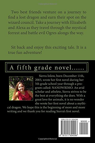 The Search for the Lost Dragon: A fifth grade novel......