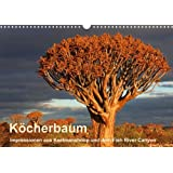 Köcherbaum - Quiver tree - Kokerboom (Posterbuch DIN A4 quer)