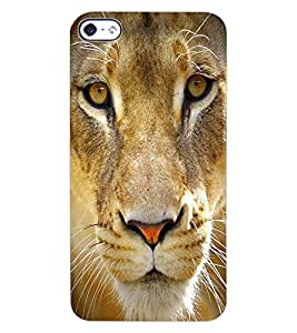 ColourCraft Lion Look Design Back Case Cover for APPLE IPHONE 4
