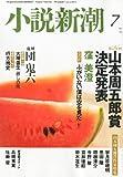小説新潮 2011年 07月号 [雑誌]