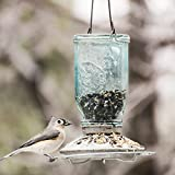 Perky-Pet Mason Jar Wild Bird Feeder
