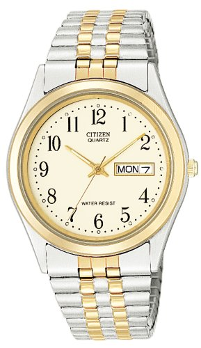Citizen Men's Two-Tone Stainless Steel Watch #BF0154-98A