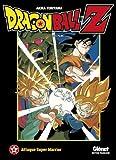 Dragon Ball Z - Les films Vol.11