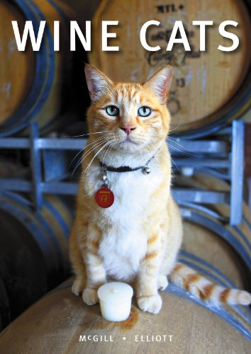 Wine Cats: Craig McGill & Susan Elliott: 9781921336386: Amazon.com: Books