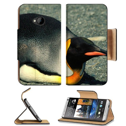 Penguin Laying Belly Nature Birds Htc One M7 Flip Cover Case With Card Holder Customized Made To Order Support Ready Premium Deluxe Pu Leather 5 11/16 Inch (145Mm) X 2 15/16 Inch (75Mm) X 9/16 Inch (14Mm) Msd Htc One Professional Cases Accessories Open Ca