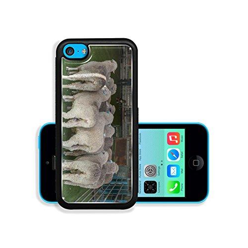 liili-premium-apple-iphone-5c-aluminum-backplate-bumper-snap-case-2015-sydney-royal-easter-show-imag