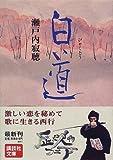 白道 (講談社文庫)