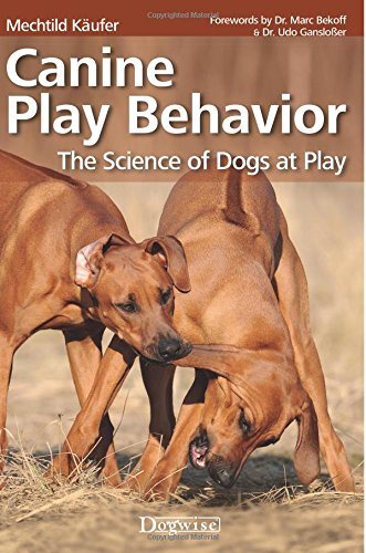 Canine Play Behavior: The Science of Dogs at Play