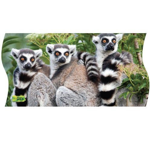 National Geographic Wild Ring-tailed Lemurs Panorama Puzzle