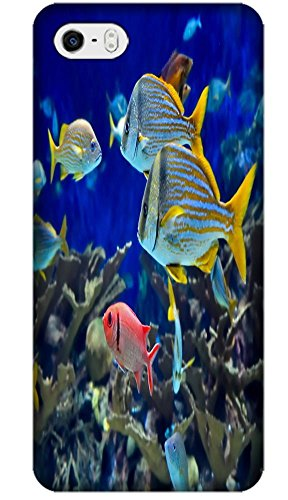 Top Quality Phone Accessories Under Sea World Beautiful Colorful Fishs Clean Water Special Design Cell Phone Cases Covers For Iphone 4/4S No.4