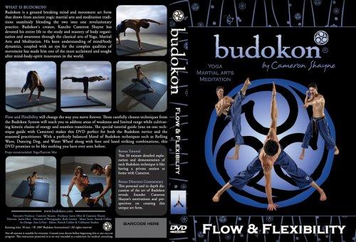 Cameron Shayne's Flow & Flexibility (martial arts/yoga fusion DVD)