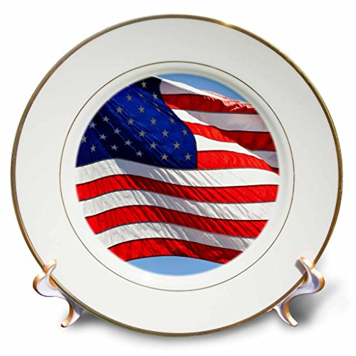 3dRose cp_53611_1 American Flag USA Patriotic Americana Porcelain Plate, 8-Inch