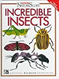 img - for Incredible Insects (Ranger Rick's Naturescope) book / textbook / text book