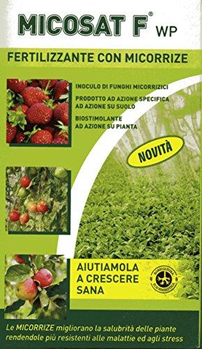 micosat-f-wp-da-200-grammi