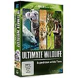Ultimate Wildlife -
