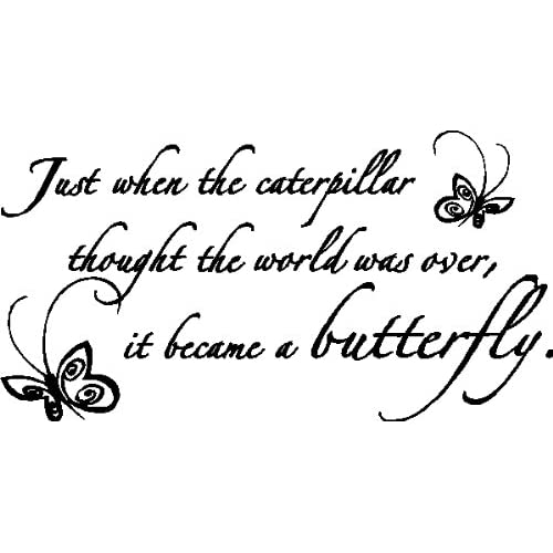 Just When the Caterpillar Quote