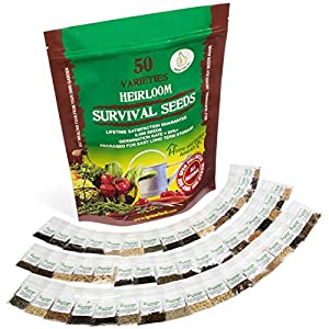 Grow For It! 100% Heirloom Vegetable Garden Survival Seeds - 9500+ Seed Count - 85% Germination Success Rate - 50 Varieties Of Vegetables - Non-Hybrid, Non-GMO