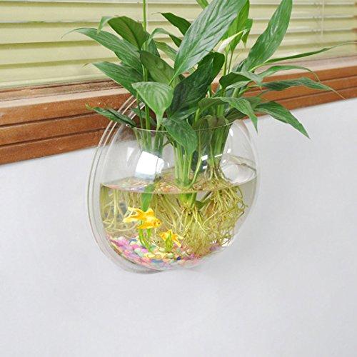 Tinksky da acquario da parete in vetro trasparente vaso for Acquario da parete