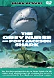 Shark Attack - The Grey Nurse And Port Jackson Shark [DVD]