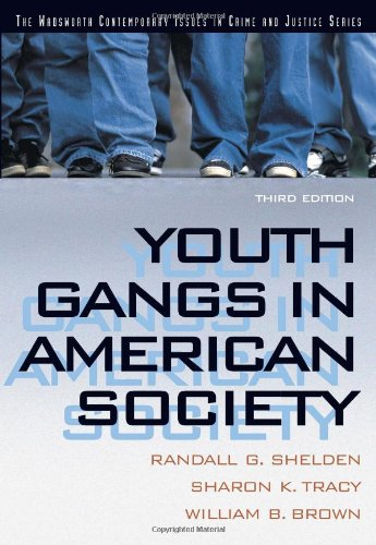 Youth Gangs in American Society (Contemporary Issues in...