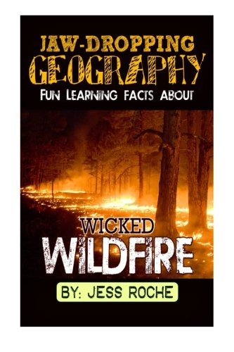 Jaw-Dropping Geography: Fun Learning Facts About Wicked Wildfires: Illustrated Fun Learning For Kids: Volume 1