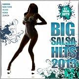 Big Salsa Hits 2013