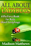 Children's Book About Ladybugs: A Kids Picture Book About Ladybugs with Photos and Fun Facts