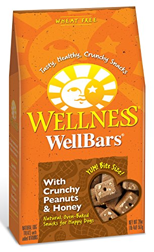 Wellness Natural Grain Free Wellbars Crunchy Dog Treats, Peanut & Honey Recipe, 20-Ounce Bag (All Natural Pet Food compare prices)