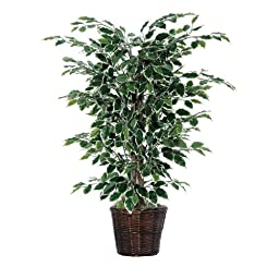Vickerman AZTBU0240 Variegated Ficus Bush, Dark Green, 4-Feet
