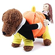 Pet Costume - Puppy Dog Teddy Funny Carrying Pumpkin Pet Coat Suit - Size: S