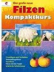 Der gro�e neue Filzen Kompaktkurs: Gr...