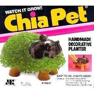 Chia Elephant