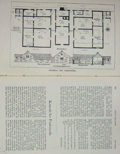 1901-Antiken-Plan-Hundehtten-Jagdhunde-Baily-Zeitschrift