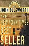 The New York Times Bestseller: A Novel (Thaddeus Murfee Legal Thrillers Book 8)