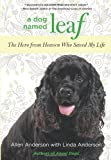 img - for A Dog Named Leaf: The Hero from Heaven Who Saved My Life book / textbook / text book