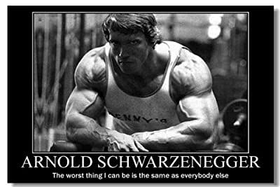Arnold Schwarzenegger Movie Silk Wall Poster Mr Olympia Bodybuilding Terminator Big Prints Boy Room (010) - 24x36 inches