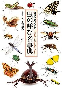 散歩で見つける 虫の呼び名事典