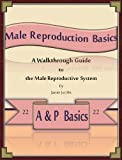 img - for Male Reproduction Basics: A Walkthrough Guide to the Male Reproductive System (A&P Basics Book 22) book / textbook / text book
