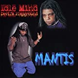 Idle Mind Devil's Playground by Mantis