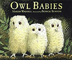 "Cover of ""Owl Babies"""
